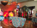 FUN.14 Decorated Function Theme Example - Tropical Buffet